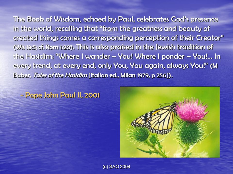 The Book of Wisdom, echoed by Paul, celebrates God's presence in the world, recalling that from the greatness and beauty of created things comes a corresponding perception of their Creator (Wis 13:5; cf. Rom 1:20). This is also praised in the Jewish tradition of the Hasidim: Where I wander – You! Where I ponder – You!... In every trend, at every end, only You, You again, always You! (M Buber, Tales of the Hasidim [Italian ed., Milan 1979, p 256]).